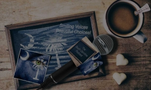 Blurbidea Podcast Website Design Columbia, SC